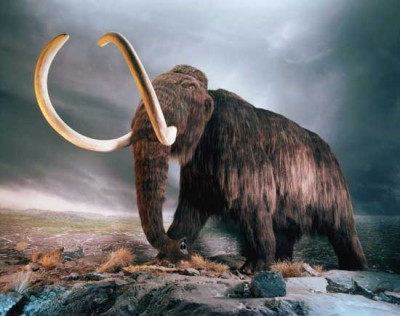 Lecture: «Chronicles of Pleistocene period with Arsen Faradzhev»