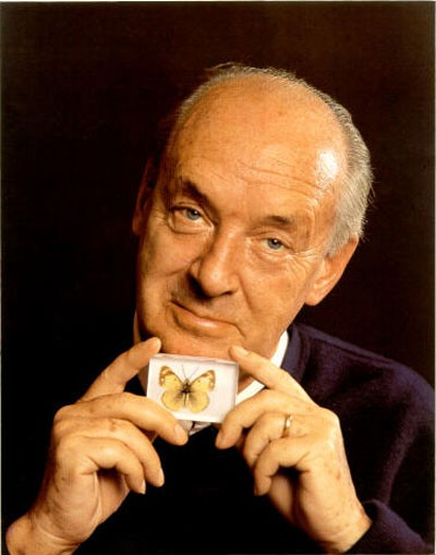 Round Table talk: Vladimir Nabokov's Oeuvre analysis
