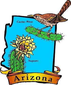 Детский Клуб: «Arizona»