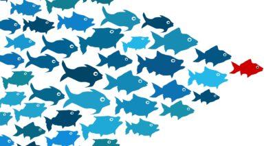 "Master-class: Personal efficiency skills development in teamwork ""My Interest"""