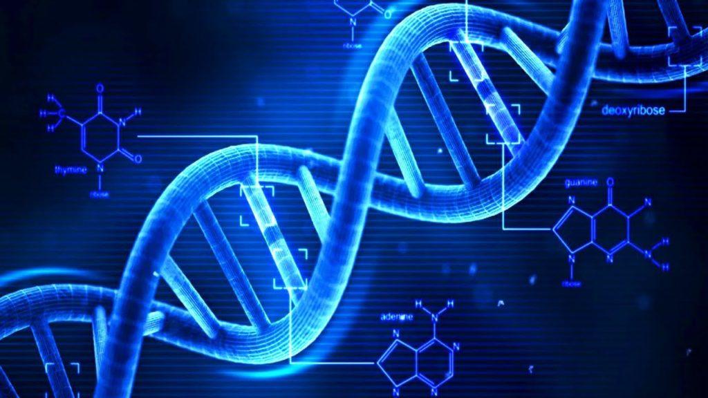 Interactive presentation: «Combating Genetic Illnesses»